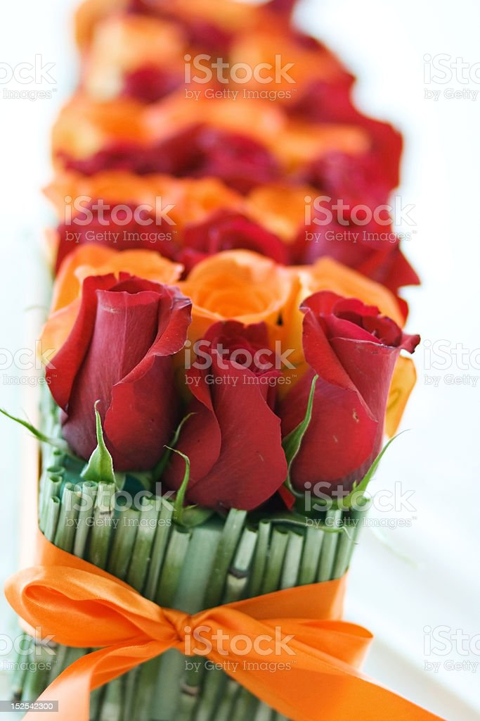 Red and Orange Roses royalty-free stock photo