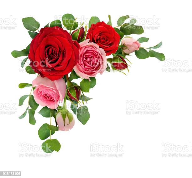 Red and pink rose flowers with eucalyptus leaves in a corner picture id928473106?b=1&k=6&m=928473106&s=612x612&h=lcbgjnylatvltfbtuulexzscjmfvivpfohdemsrxwdo=