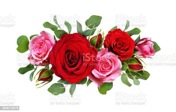 Red and pink rose flowers with eucalyptus leaves in a floral picture id928473076?b=1&k=6&m=928473076&s=612x612&h=hr9cc23 pcq vyjinbmujjvypb1phtl obpgwsxbebm=