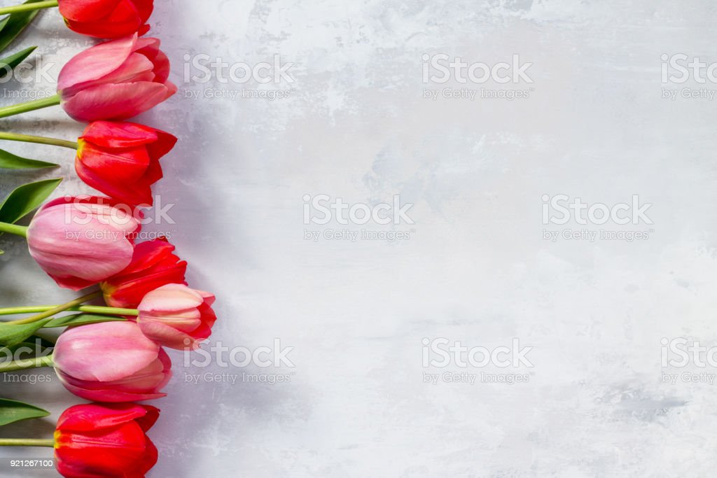 Red and pink tulips flower background. Top view with copy space. stock photo