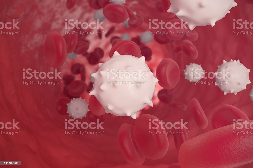 Red and white blood cells in cut flowing through veins stock photo