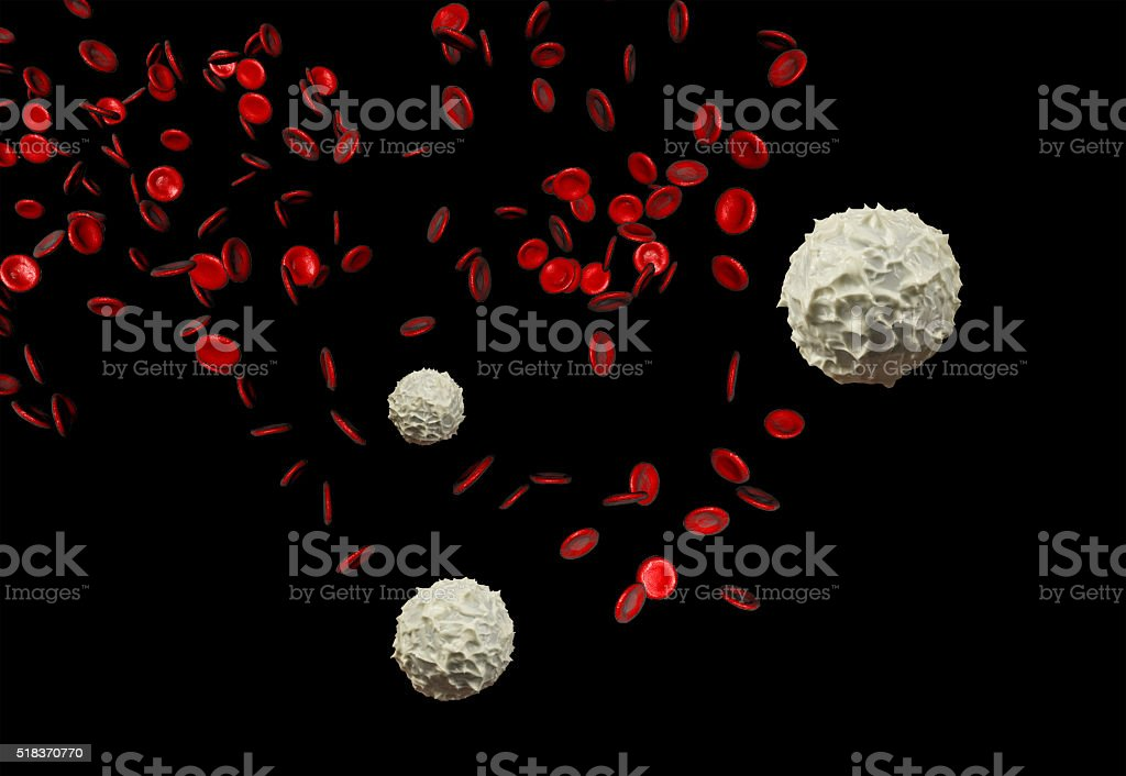 Red and White Blood Cells stock photo