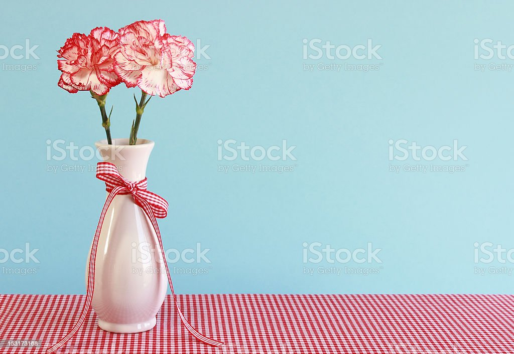 Red and White Carnations in a Vase stock photo