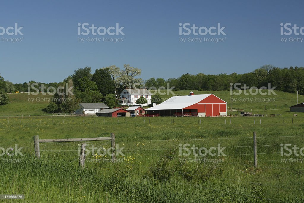 Red and White Farm royalty-free stock photo