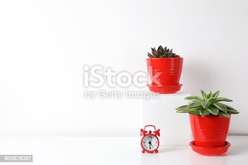518847146istockphoto Red and white frame poster with plant in pot on table. 955828092