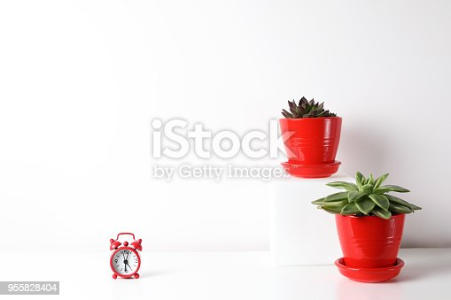 518847146istockphoto Red and white frame poster with plant in pot on table. 955828404