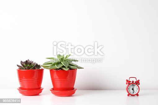 518847146istockphoto Red and white frame poster with plant in pot on table. 955828414