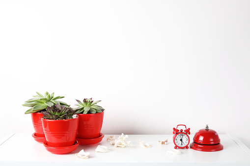 518847146 istock photo Red and white frame poster with plant in pot on table. 955828440