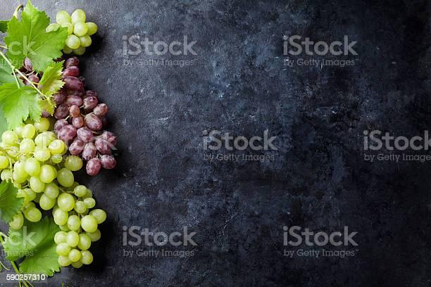 Rote Und Weiße Trauben Stockfoto und mehr Bilder von Ansicht von oben