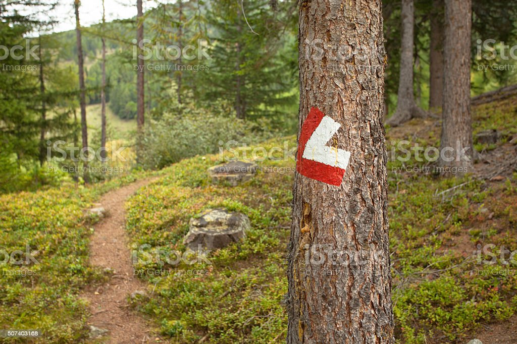 Red and white path sign inside a woods stock photo