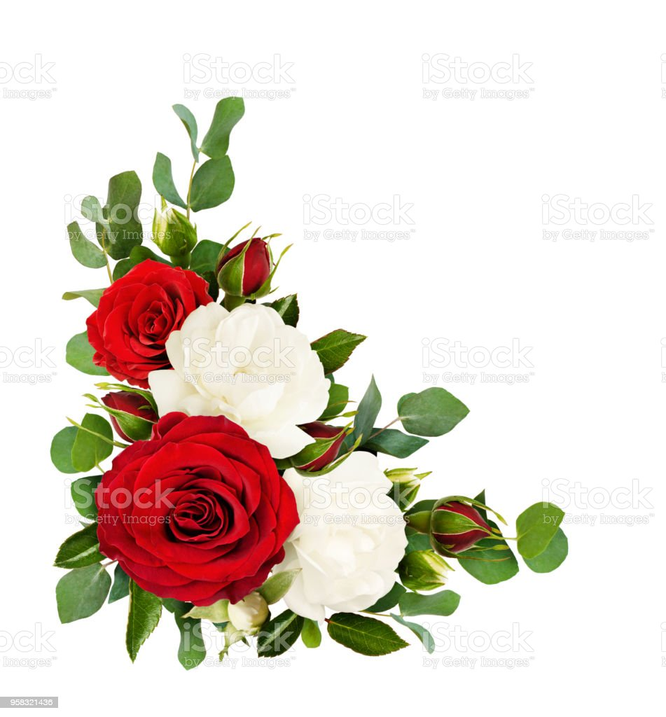 Red And White Rose Flowers With Eucalyptus Leaves In A Corner