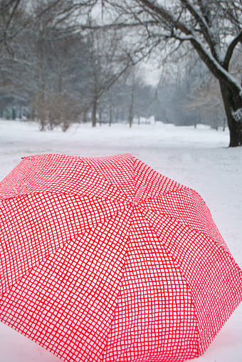 One umbrella in contrast with the white snowy ground and bare trees