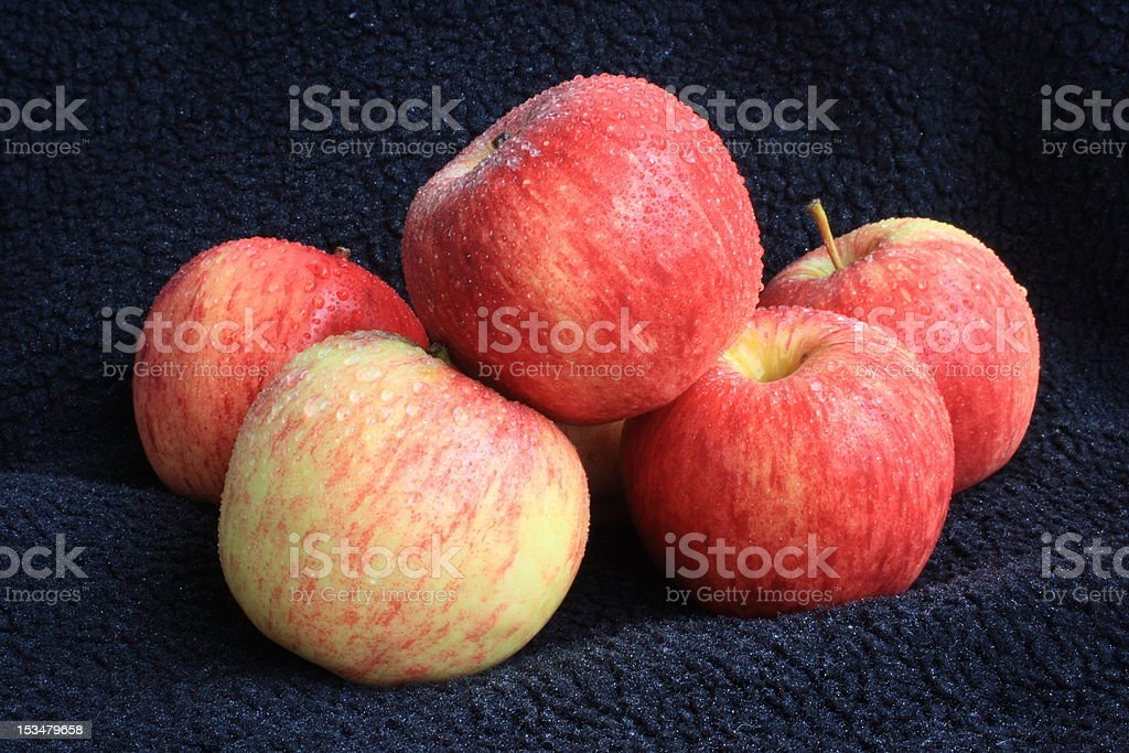 Red and yellow apples royalty-free stock photo