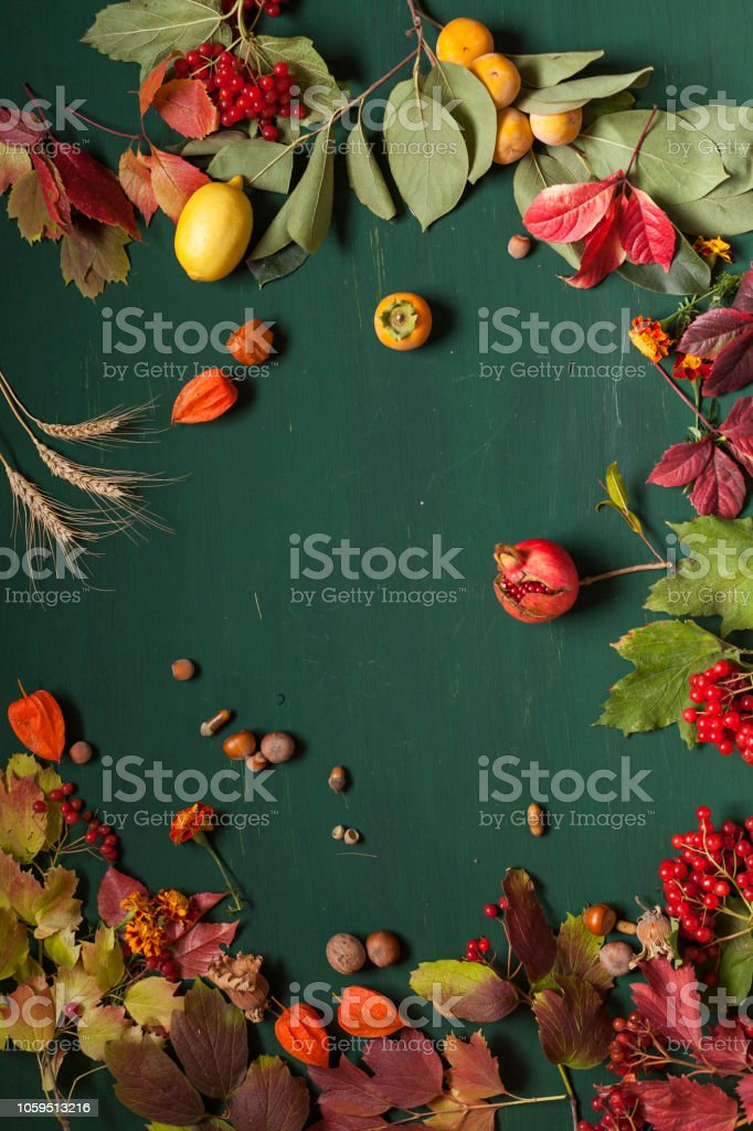 Red and yellow autumn leaves fruit nuts on green background stock photo