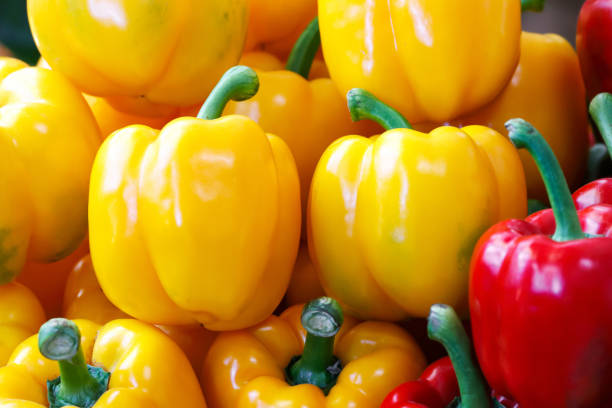 Red and yellow bell pepper stock photo