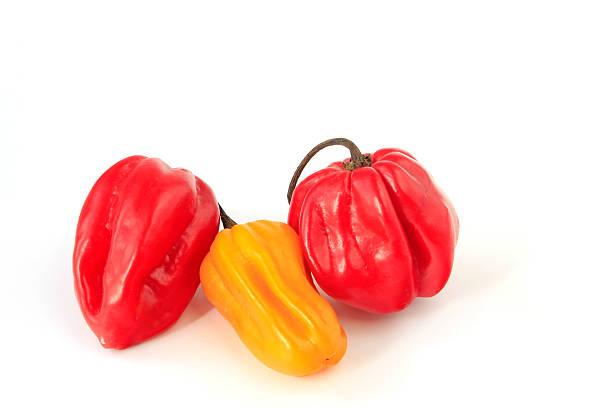 Rote und gelbe Laterne chili – Foto