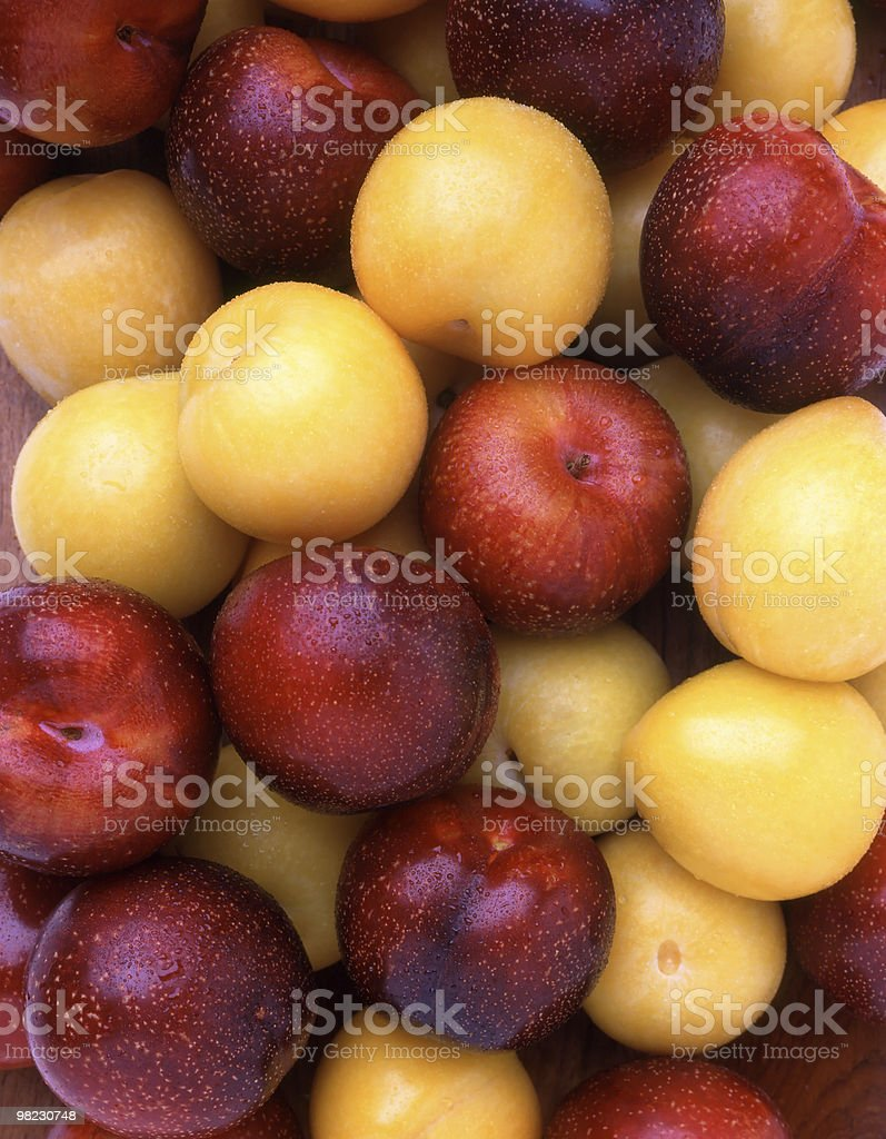 Red and Yellow Plums royalty-free stock photo