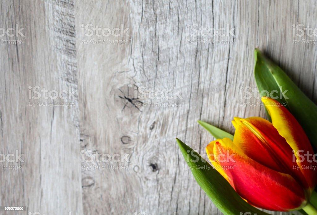 Foto De Tulipa Vermelha E Amarela Em Fundo De Madeira Convite