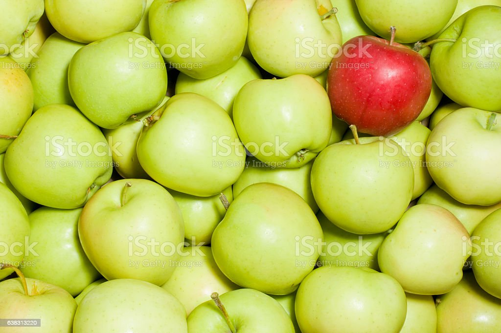Red apple amongst green apples stock photo