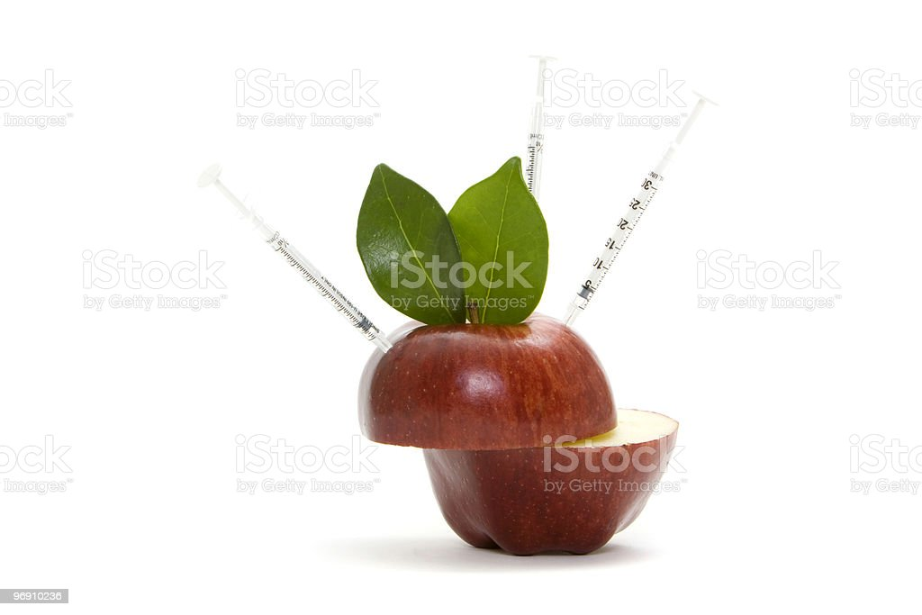 Red apple and needles royalty-free stock photo