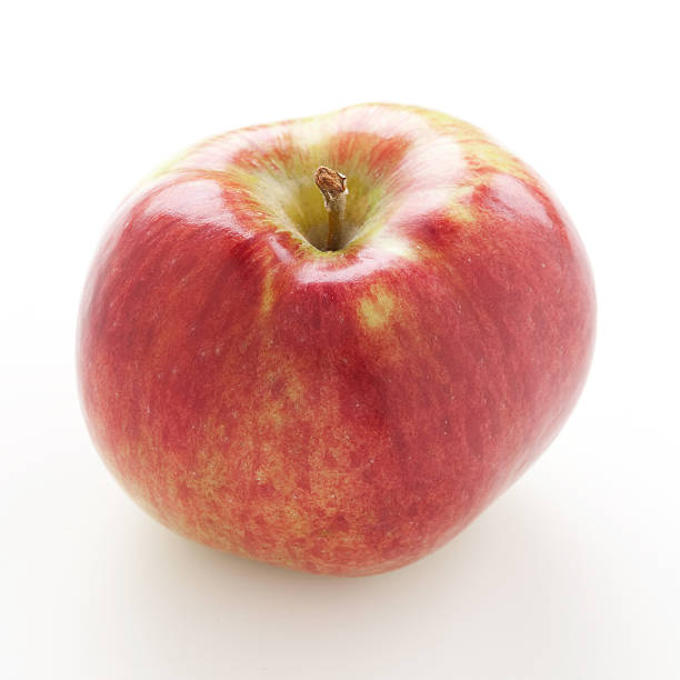 Red apple Cortland stock photo