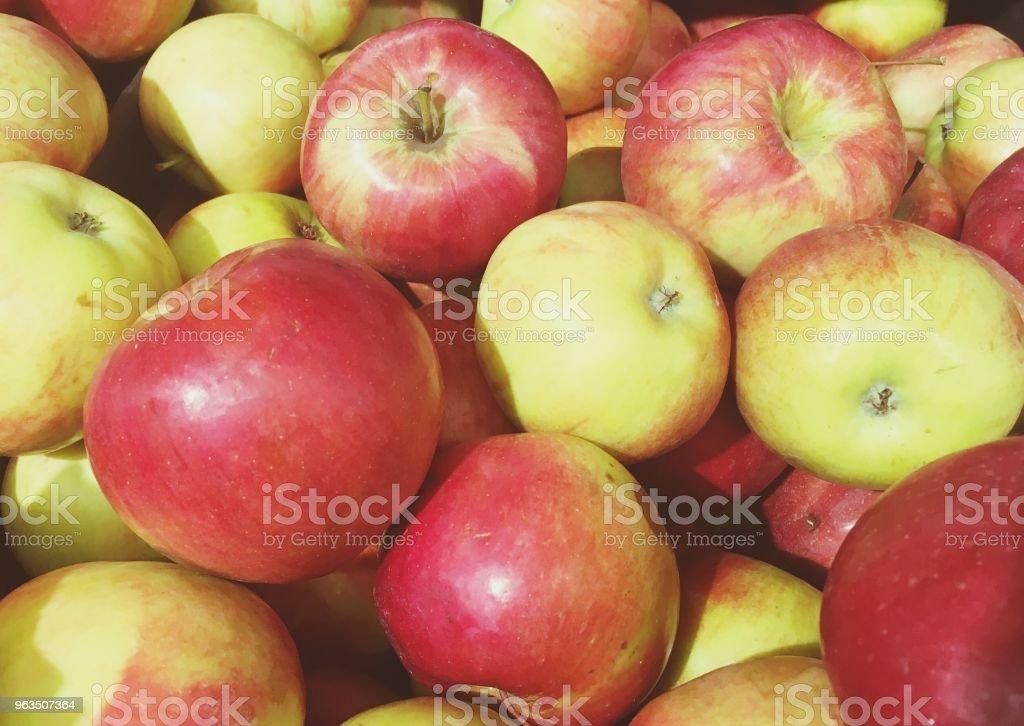 fruta maçã vermelha nas prateleiras - foto de acervo