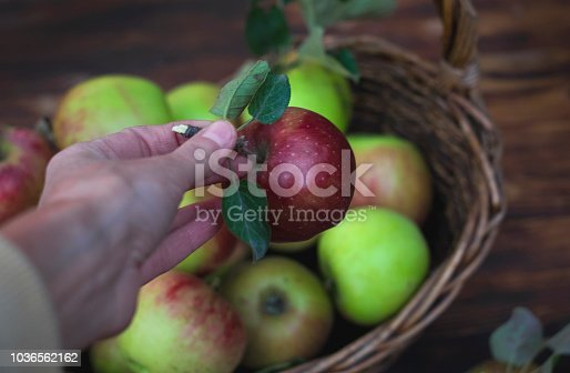 1020586746istockphoto Red apple in the hand and the basket with apples on the wooden table 1036562162