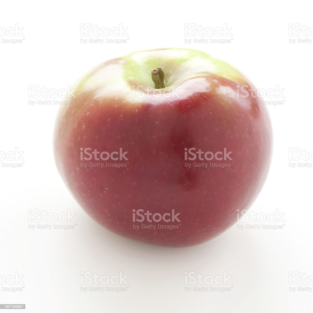 Red apple McIntosh stock photo