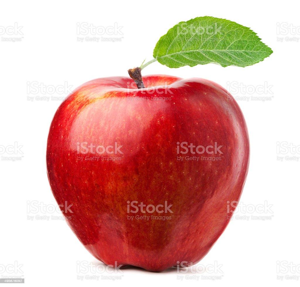 레드 사과나무 - 로열티 프리 0명 스톡 사진