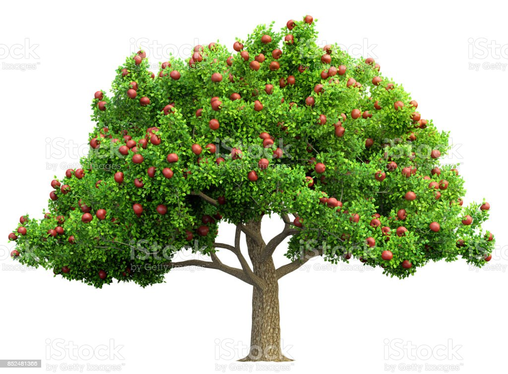 red apple tree isolated 3D illustration stock photo