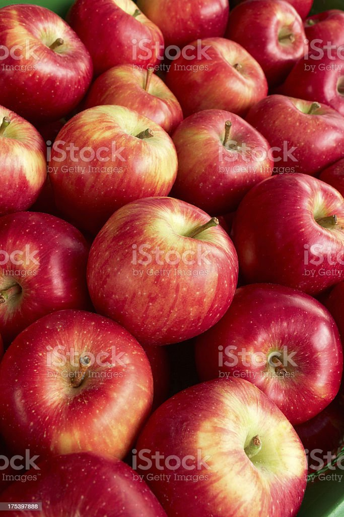 Red Apples At Market royalty-free stock photo