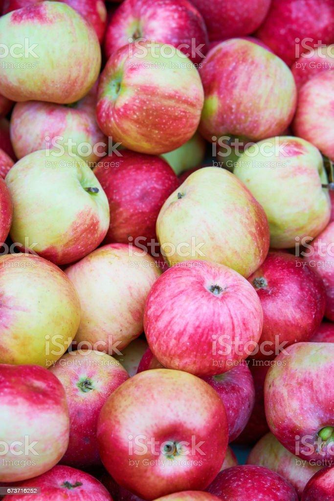 Pommes rouge fond photo libre de droits