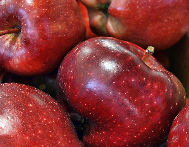 Red apples close up background Close up on fresh and clean red apples group from harvesting red delicious apple stock pictures, royalty-free photos & images