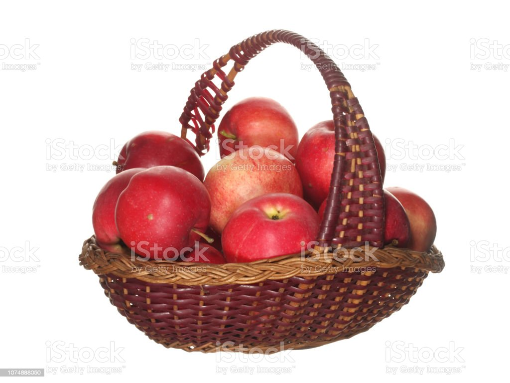 Best Tools To Get You Ready For Apple Picking