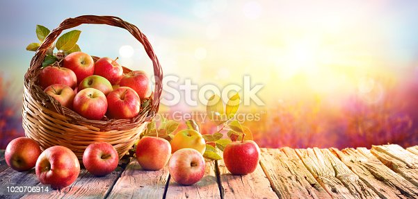 Red Apples In Basket On Aged Table At Sunset In Orchard