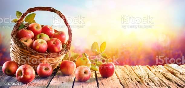 해질녘 나무 테이블에 바구니에 빨간 사과 0명에 대한 스톡 사진 및 기타 이미지