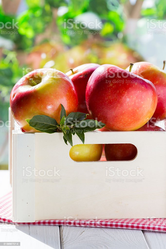 Red apples in the box stock photo