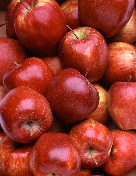 Red Apples Red Apples from Trentino red delicious apple stock pictures, royalty-free photos & images
