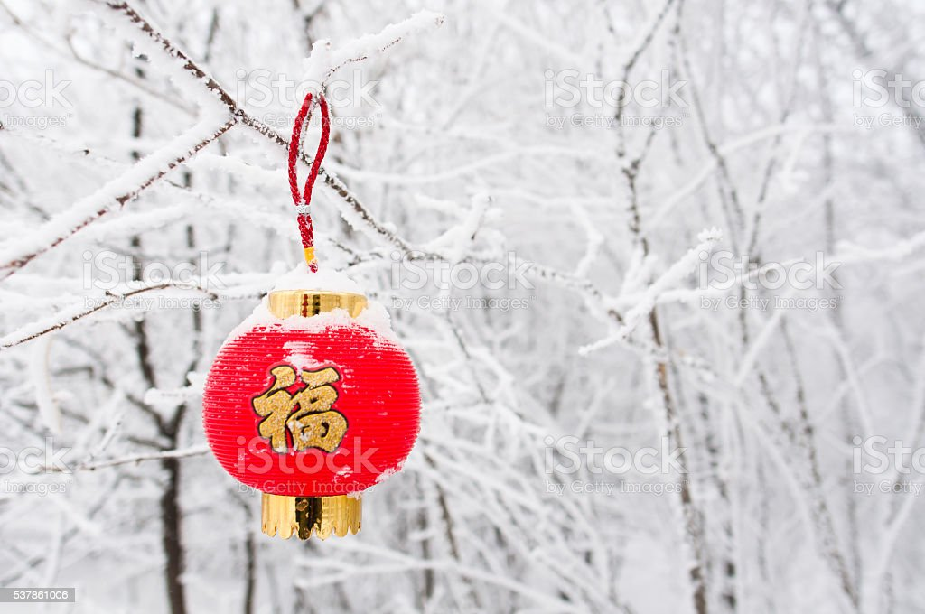 red auspicious lantern hanging on branch stock photo