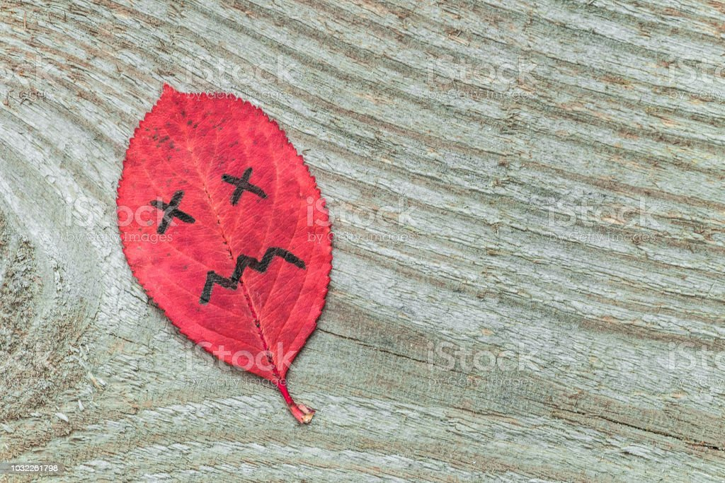 Red autumn leaf with sad face emotions on the old wooden background....