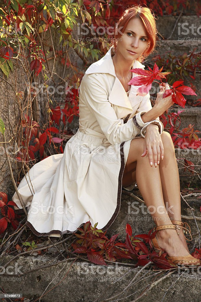 red autumn royalty-free stock photo
