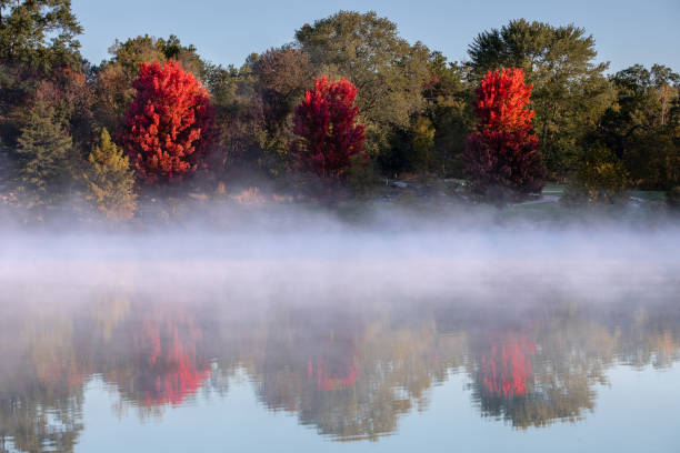 Red Autumn trees with Foggy Lake stock photo