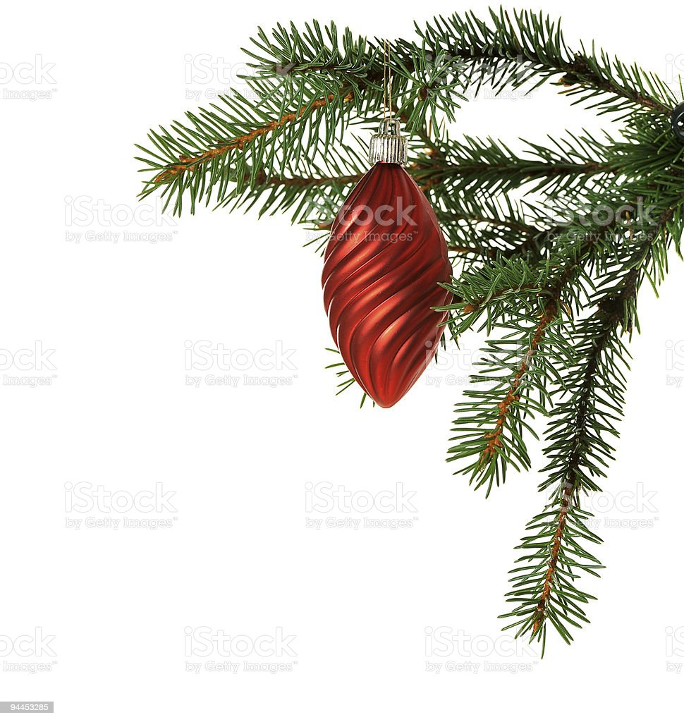 red ball on fir branch royalty-free stock photo