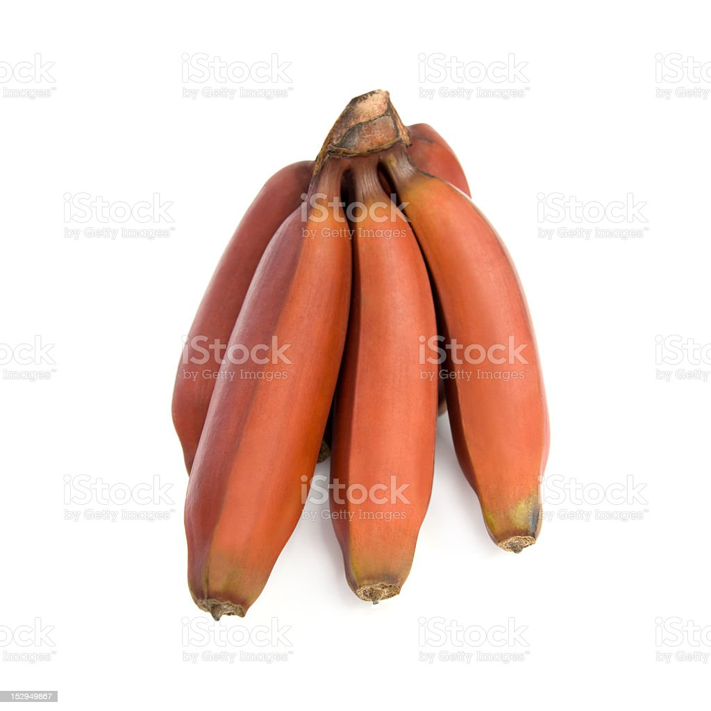 Red bananas. stock photo