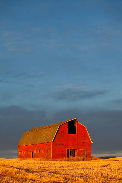 Red barn against a setting sun stock photo