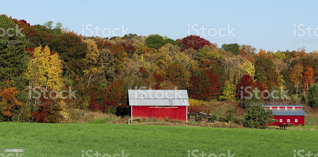 Red Barn and Autumn trees royalty-free stock photo