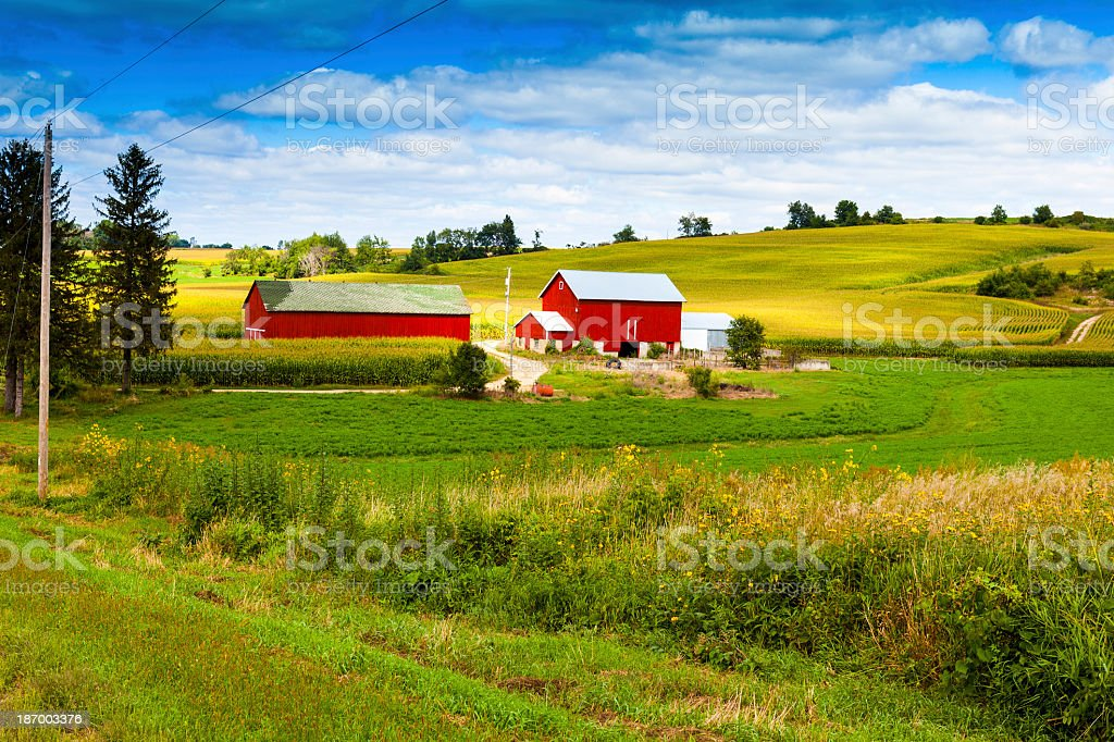 Red barn and farmhouse in green hills with blue sky and tree stock photo