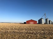 Copy space in blue sky over brown field