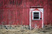 Barn door and wall with weathered red and white paint and long, Winter grass.