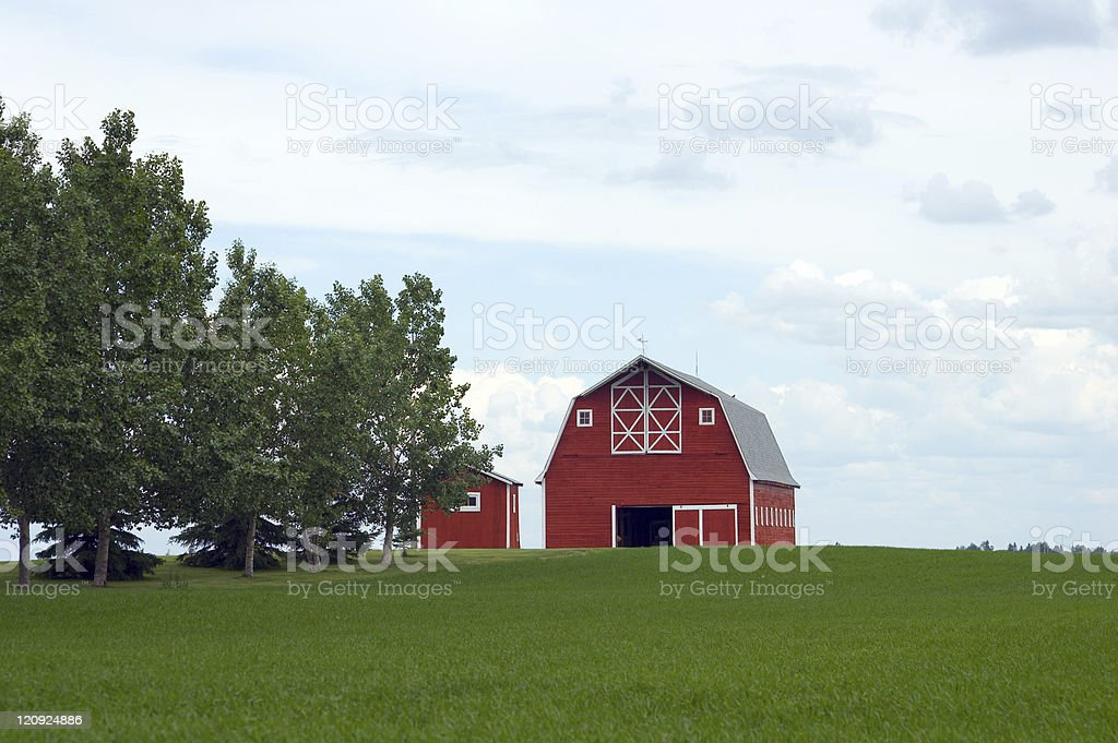 Red Barn - Green Field royalty-free stock photo